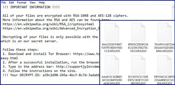 mole00 ransomware virus